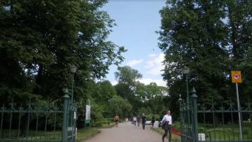 Сквер на Кузнечном переулке и парк Малиновка не включили ...