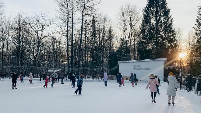 На Новый год в Елагин парк петербуржцы смогут попасть бесплатно
