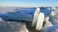 В Финском заливе нашли вмерзший в лед труп в футболке ...
