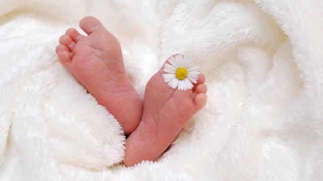 В Петербурге увеличили на 3,4% маткапитал для семей с тремя детьми