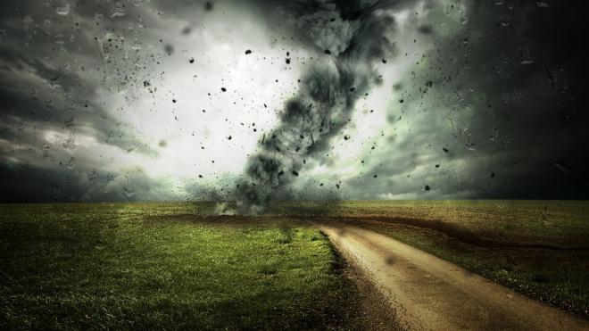МЧС: в субботу в Петербурге ожидается штормовой ветер