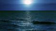 Утонувшая в Финском заливе девочка пыталась достать ...