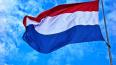 Суд по MH17 не раскроет личность свидетеля, лишенного ...