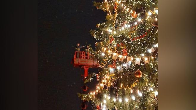 На главной елке Петербурга появились игрушки в стиле ретро