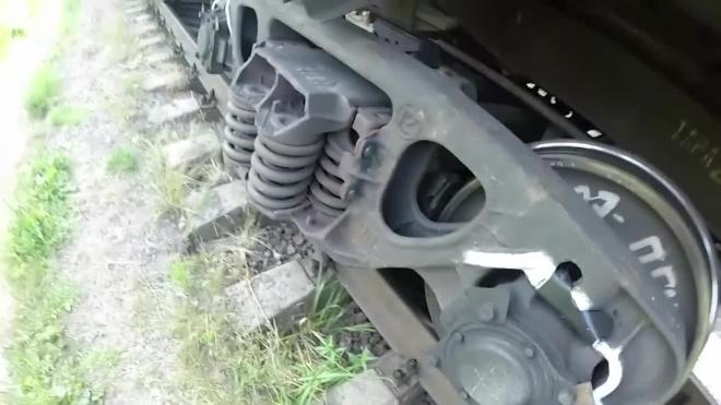 Под Павловском дерево упало на железную дорогу и отменило сразу три электрички