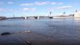 Гнилой труп мужчины всплыл у набережной Макарова