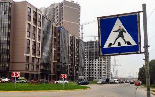"""В Шушарах установили """"беглый"""" знак с изображением губернатора Петербурга"""