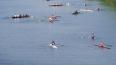 В Ленобласти состоится фестиваль водных видов спорта ...