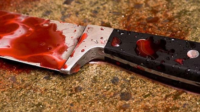 Маленькая девочка из Барнаула искромсала насильника его же ножом