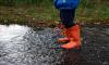 Петербург защитят от паводков более 15 тысяч специалистов и двух тысяч машин