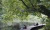 В Невском районе благоустроили сад у Ивановского карьера