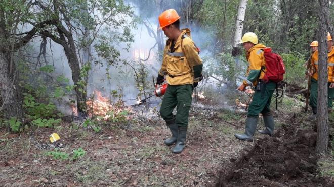 Вокруг Якутска бушуют 3 лесных пожара