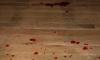 В Подмосковье убита целая семья: возбуждено уголовное дело