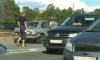 На Петергофском шоссе иномарка сбила пешехода