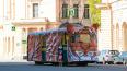 По центру Петербурга прокатился трамвай-тигр