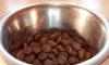 Из зоомагазина в Полюстрово украли огромный мешок с кормом для собак