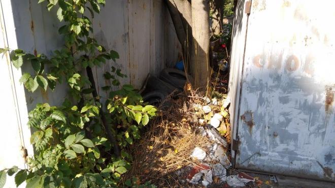 Хуже всего внутриквартальные зоны в Петербурге убирают ЖКС Выборгского района