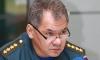 Сергея Шойгу сватают на пост губернатора Московской области