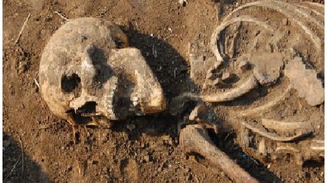 В колодце на улице Академика Лебедева нашли скелет