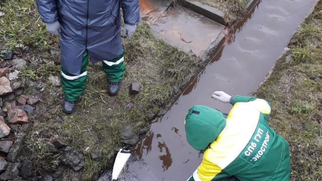 В реке Ижора собрали больше ста килограмм химических отходов