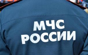 В МЧС России разъяснили изменения в Правилах противопожарного режима