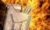В Сосновом Бору задержаны поджигатели-профессионалы
