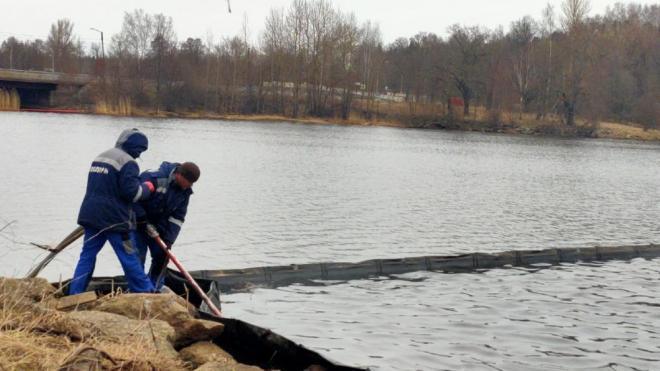 Специалисты из Петербурга очистили от нефтепродуктов бухту Радуга
