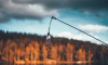 В Ленобласти задержаны браконьеры с электроудочками, ловившие форель