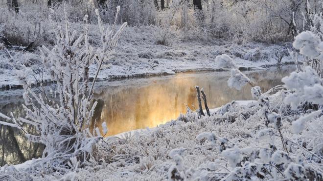 Синоптик рассказал, когда в Петербурге закончится снегопад