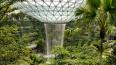 Фото: в сингапурском аэропорту откроется самый высокий ...