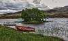 Житель Выборгского района скончался в лодке на острове Финского залива