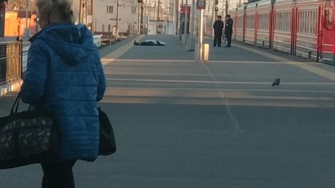 На платформе Балтийского вокзала обнаружили труп