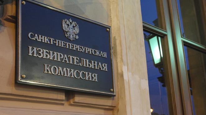 Избирком Петербурга направил в ЦИК данные по теме электронного голосования