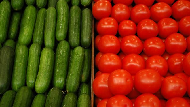 В Петербург запустили почти 800 тонн белорусских огурцов и томатов