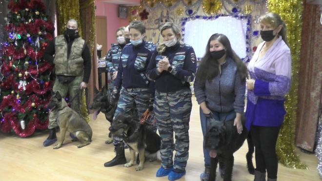 В Пушкине воспитанников детского дома с Новым годом поздравили собаки-полицейские