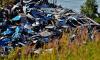 В Кронштадте нашли незаконную свалку отходов