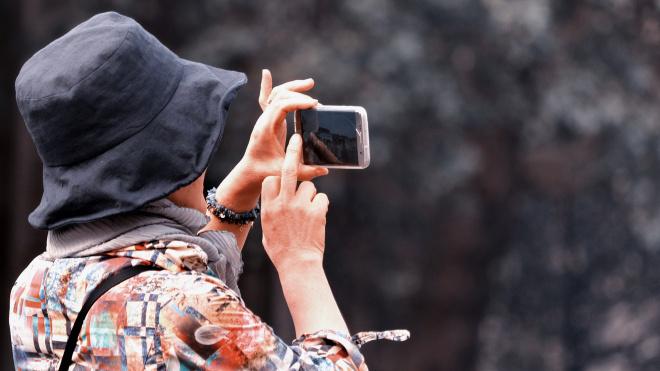 Петербург посетило уже 14 тысяч туристов по электронным визам