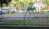 В Пушкине высадят березы и построят детскую площадку за 30 миллионов рублей