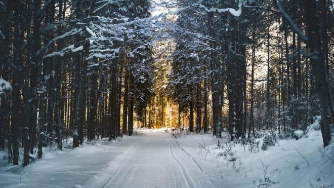 Ленобласть вошла в тройку лучших горнолыжных курортов России в новогодние праздники