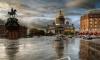 Дети смогут бесплатно посетить 17 петербургских музеев