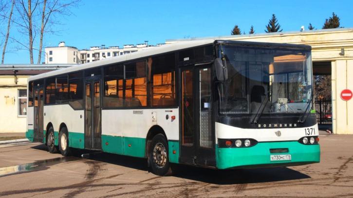 Высокопольные маршрутные автобусы Петербурга заменили на низкопольные