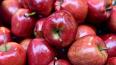 В Петербурге ликвидировали 1,8 тонны украинских яблок