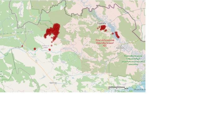 Пожар близ Чернобыльской АЭС в целом потушен