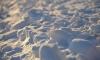 С начала года из Петербурга вывезли более 41 тысячи кубометров снега