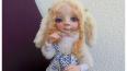 Полицейские Петербурга нашли куклыИрины Медянцевой, ...