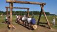Во Всеволожске будут проданы 11 заброшенных лагерей