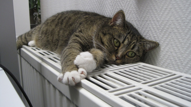 Можно ли снизить температуру в батареях? Когда будет комфортно в квартирах?