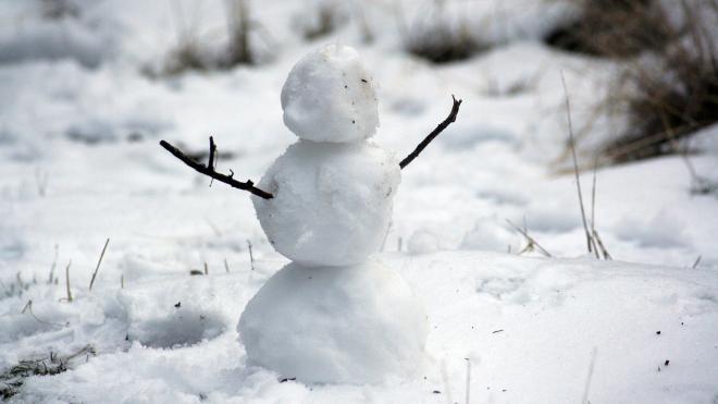 В воскресенье Ленобласть облепит мокрый снег и накроет туман