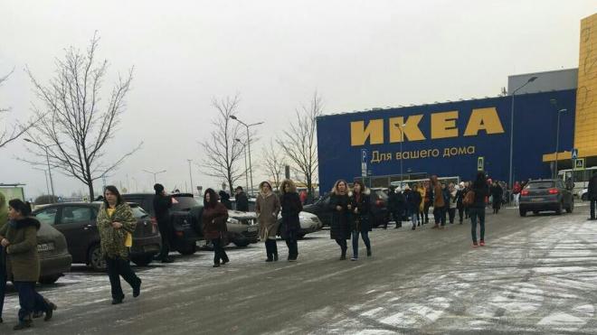 """Очевидцы: из """"МЕГА Дыбенко"""" эвакуировали посетителей"""