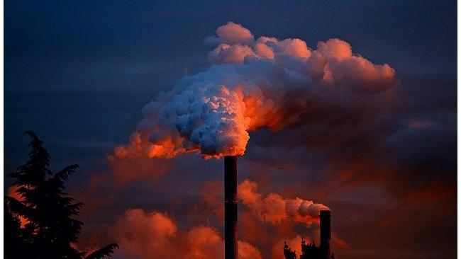 Правительство приостановит выплаты дивидендов предприятиям-загрязнителям